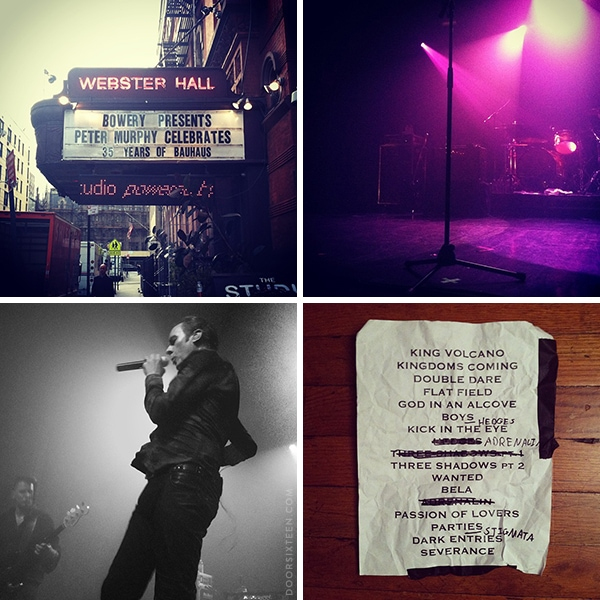 doorsixteen_petermurphy_instagrams