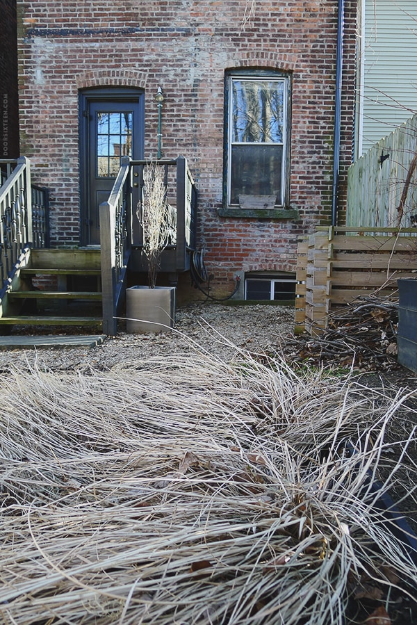 doorsixteen_backyard_grass