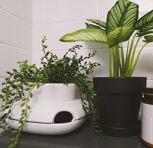 doorsixteen_aptbathroom_fakeplants_01